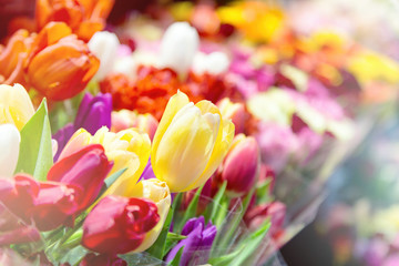 Tulips at a flower market