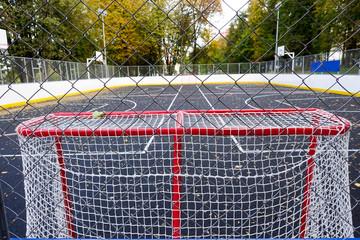 Hockey gate