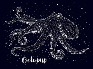 Octopus constellation