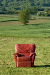 Rote Couch auf Wiese