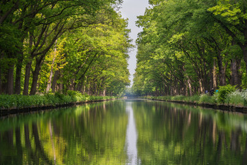 Fotobehang Pistache Symmetry view on flow line of men-made canal in Belgium with reflection