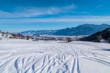 Swiss Winter - Tracks in snow