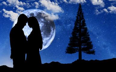 Wall Mural - enamorados bajo la luna