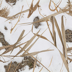 Water reed, snow and rock pattern camouflage for duck hunter