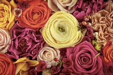 Floral background, colorful flowers buds