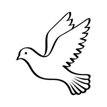 Flying bird - dove or pigeon with its wings spread line art vector icon for nature apps and websites
