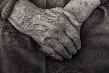 Hands of an old woman folded in her lap, black and white closeup.