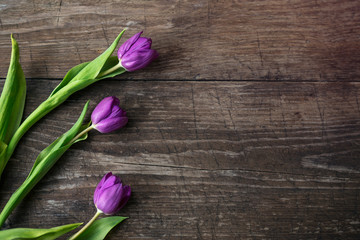 Purple tulips on wooden background top view.