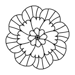Doodle flower for coloring books