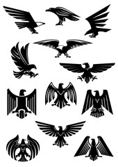 Eagle or falcon, aquila or hawk heraldic badge
