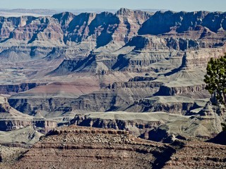 Grand Canyon filled with shadows and light from the rim. Grand Canyon National Park. Arizona. United States.