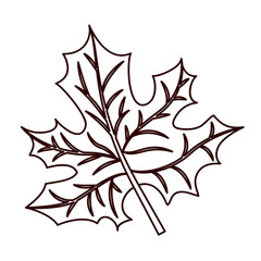 monochrome silhouette of dried leaves maple vector illustration