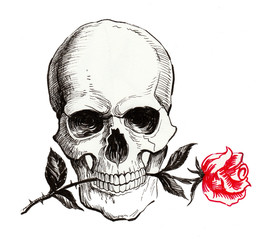 Skull with rose in teeth