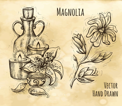 Vintage still life with natural cosmetics, candles, lily and magnolia flower