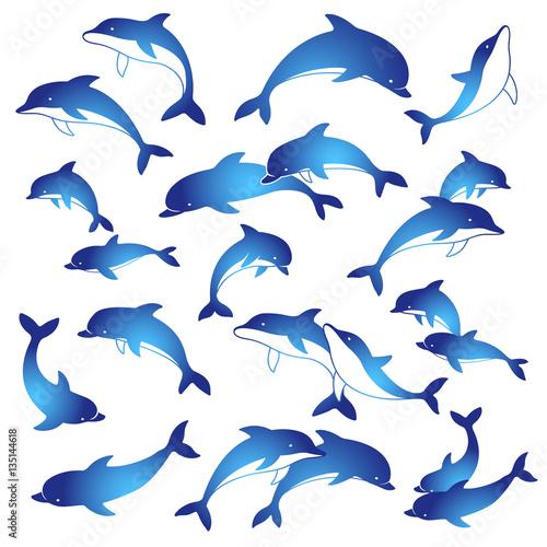 イルカのイラストfotoliacom の ストック画像とロイヤリティフリーの