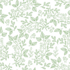 Hand drawn herb pattern. Vector background