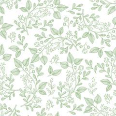 Hand drawn herb pattern. Vector background