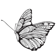 Butterfly coloring book for adults vector illustration. Anti-stress coloring for adult. Zentangle style. Black and white lines. Lace pattern