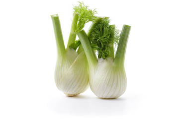 Fennel bulb with leaves