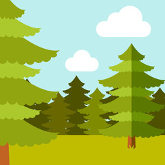 Deep Forest flat background