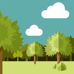 Deep Forest flat background9