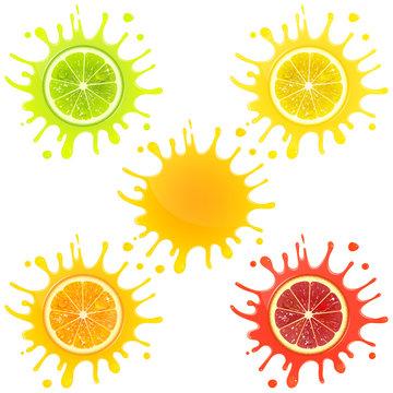 Citrus Fruit in Splashes of Juice