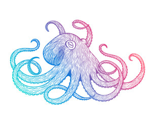 Vector illustration of octopus line art style. Design for t-shirt, posters.