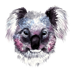 Watercolor vector koala