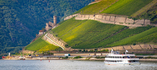 UNESCO cultural heritage middle rhine valley Germany near Bingen