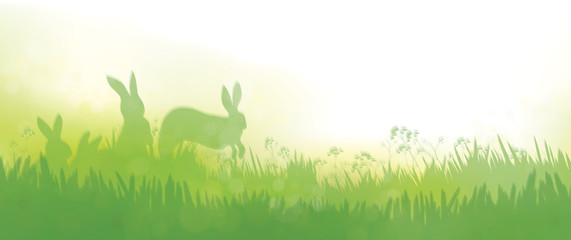 Vector  rabbits in  grass nature background.