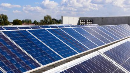 Cerca immagini pannelli fotovoltaici for Pannelli solari immagini