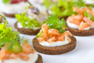 Leckeres Fisch-Fingerfood mit Lachstatar, Matjestatar und Forellencreme mit Preiselbeeren -  Finger food with salmon tartar, trout mousse with cranberries and herring salad on pumpernickel