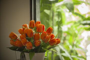 Tulips Closeup