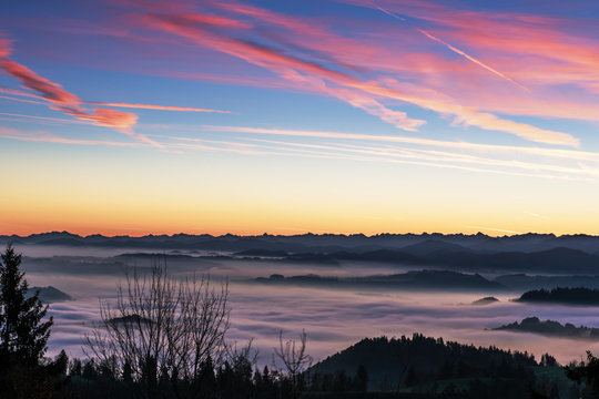 Beautiful colorful sunrise over the Swiss Alps with sea of fog extending to the orange glowing horizon. The sky is blue with purple clouds.