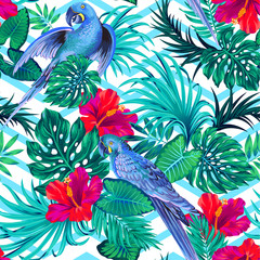 seamless vector parrern with parakeet