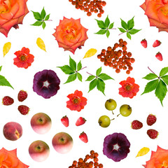 Seamless pattern of flowers pictures, fruits and leaves on a whi