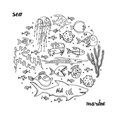 Marine life, sketch for your design