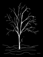 Monochrome tree silhouette vector sketched line art isolated