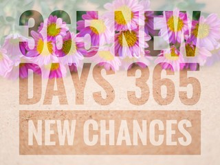 365 New Days 365 New Chances words on pink and wooden backgroun