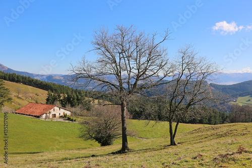 Paisaje rural caser o pa s vasco u84a3271 f17 stock - Caserio pais vasco ...