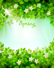 Spring branches with fresh green leaves. Season background framed by white floral elements.