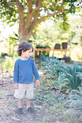 Boy standing in garden looking at plants