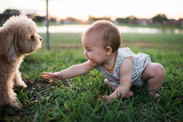Baby and puppy playing on grass