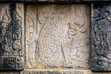 Ancient Mayan murals depicting jaguars and eagles grasping human hearts on the Platform of the Eagles and the Jaguars at Chichen Itza, Yucatan, Mexico