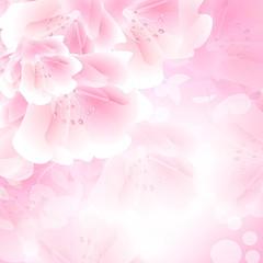 декоративный узор розовые цветы фон