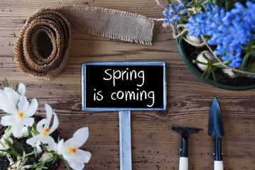 Flowers, Sign, Text Spring Is Coming