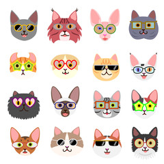 cute cats faces with glasses
