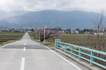 In the picture we can see a straight long road leading towards the mountain. Blue railings,trees and a agricultural field can also be seen in the picture.