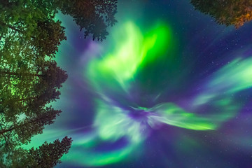 Beautiful Northern lights over head