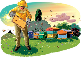 Beekeeper takes care of his hive, surrounded by worker bees.